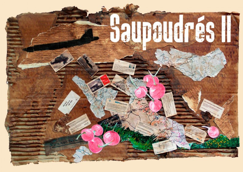 carton-SaupoudresII-ok-bonne-couleur